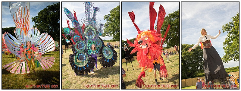 Dk Photography Isle Of Wight Rhythm Tree Festival 2017